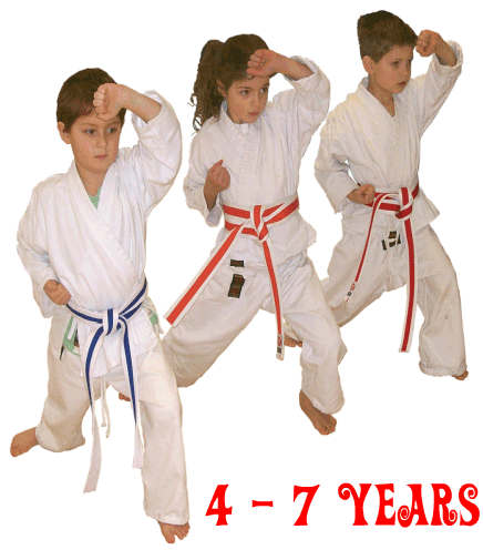 Image of Tiny Tigers karate